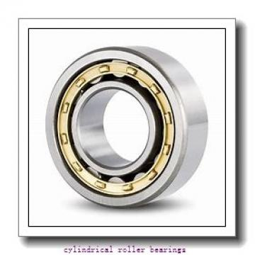 FAG Z-517680.07.ZL BEARING Cylindrical Roller Bearings