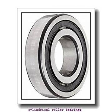 220 mm x 400 mm x 65 mm  FAG NU244-E-M1 Cylindrical Roller Bearings
