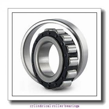 FAG NU1036-M1A-P5-C4 CYL RLR BRG Cylindrical Roller Bearings